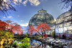 belle_Isle_conservatory_dome